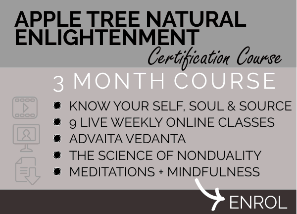 Natural Nondual Enlightenment Course