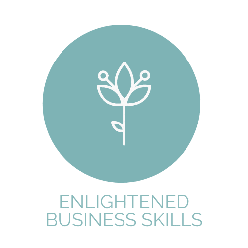 Enlightened Business Coaching Skills for coaches